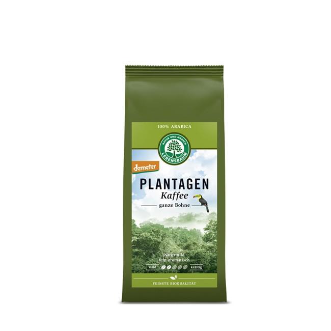 Bio Plantagen Kaffee aus Mexiko 250g milde Arabica Bohnen